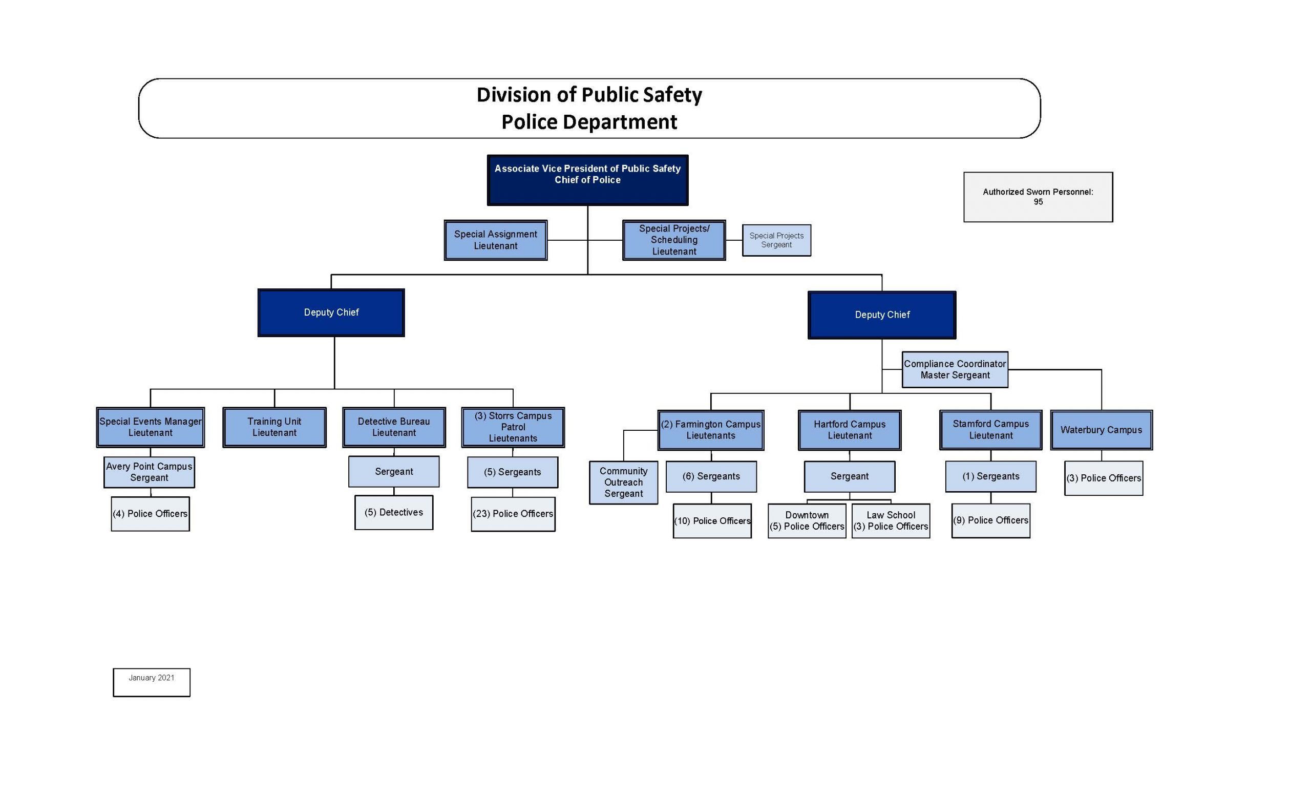 position org chart
